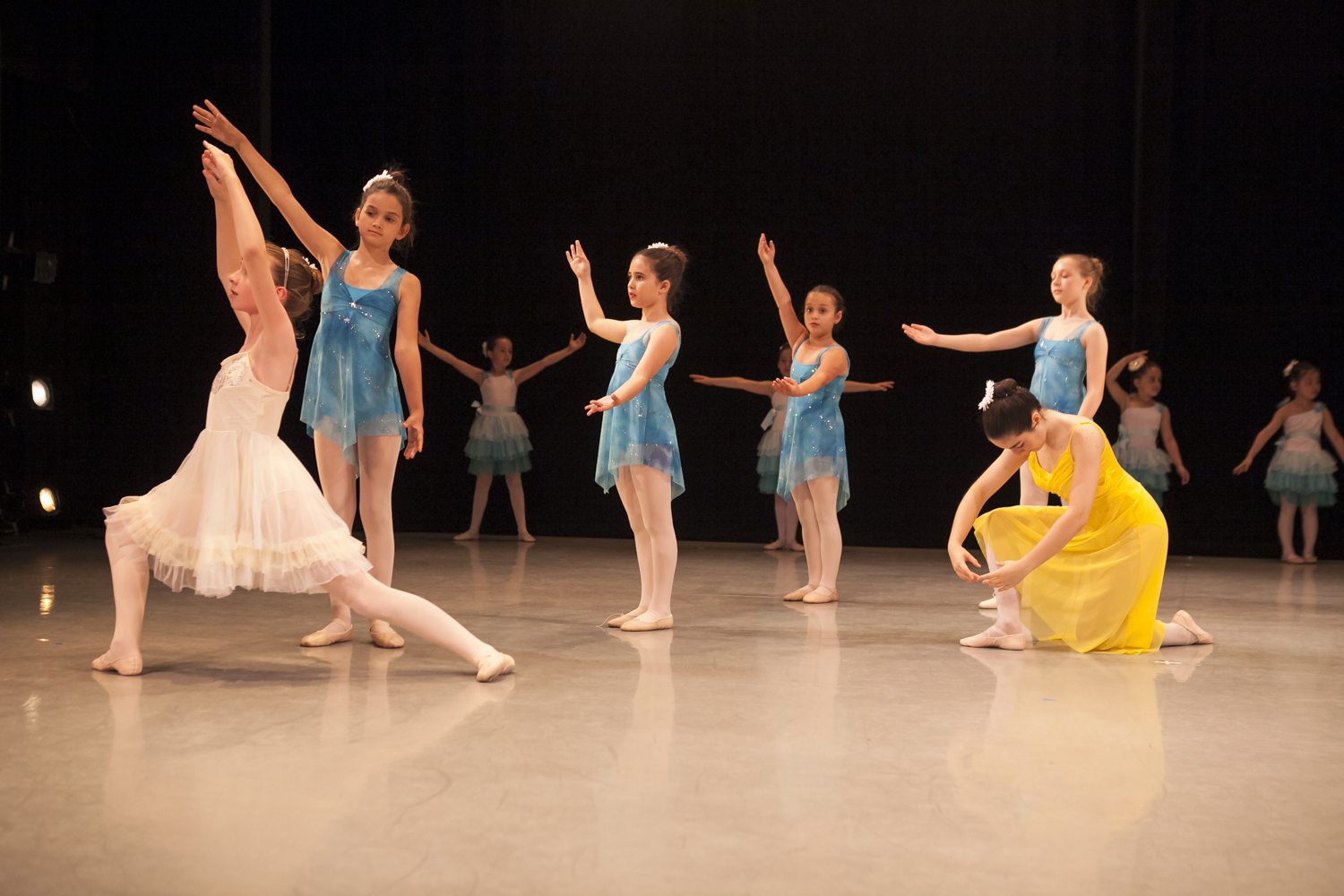 Performing Arts Pre Professional Division The Ballet Club